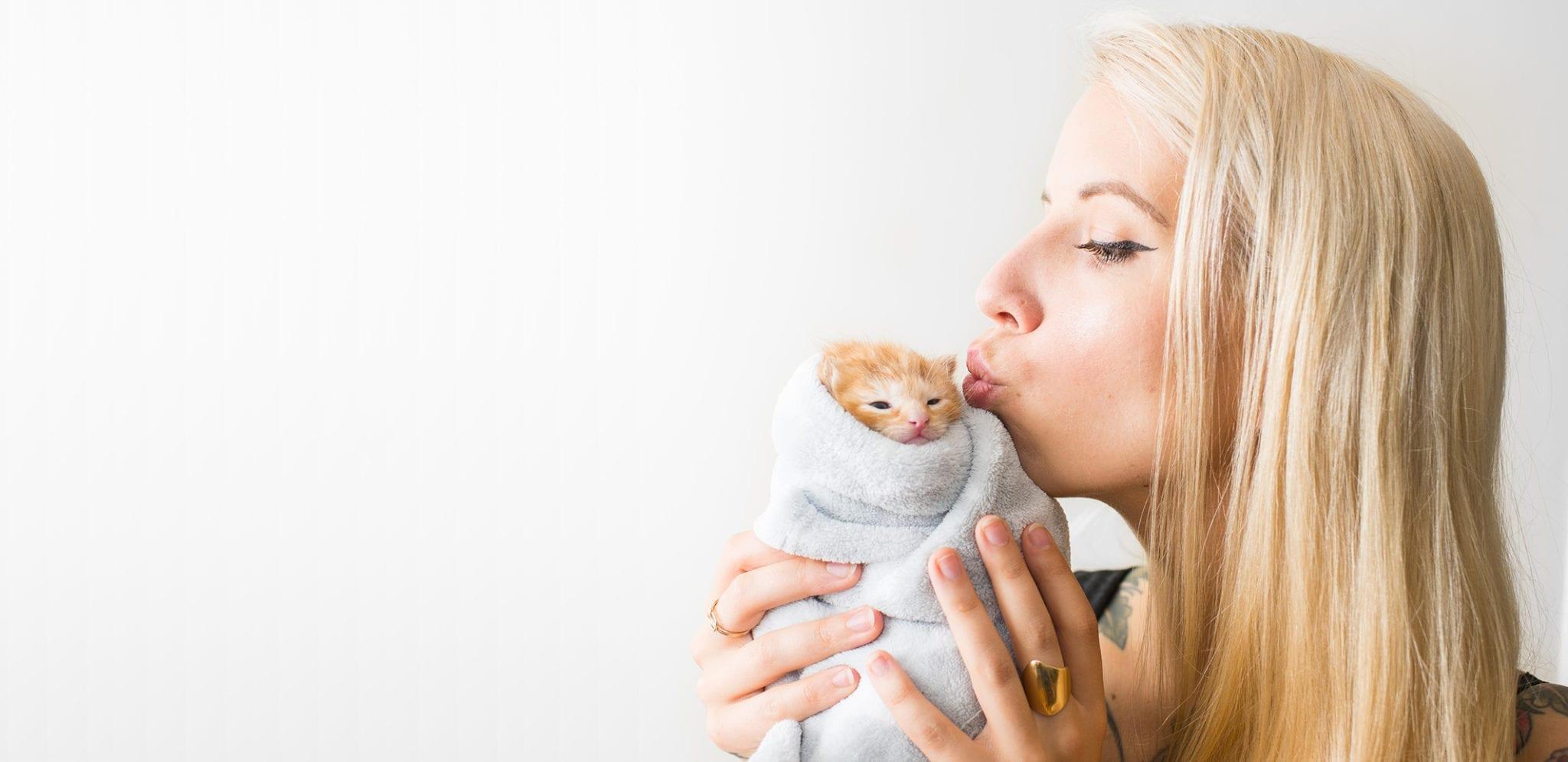 Humane Society Waterville Area | Animal Adoptions